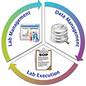 Information Management Solutions